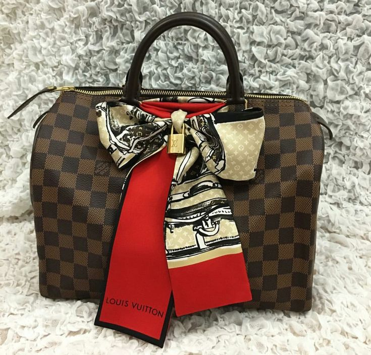 Louis Vuitton Speedy & Bandeau