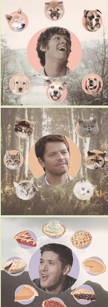 Sam Winchester and puppies. Castiel and kittens. Dean Winchester and pies…