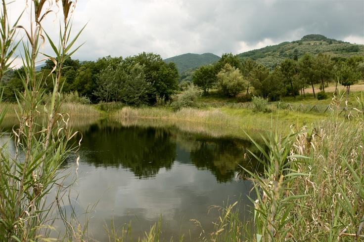 Agriturismo Marzalla, laghetto