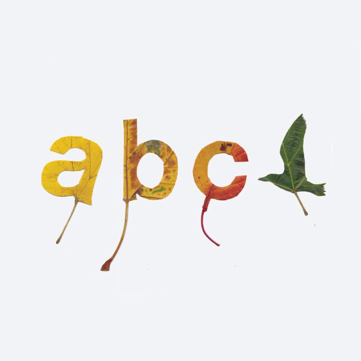 Leaf Alphabet by graphic designer Twan van Keulen, cut out letters from leaves
