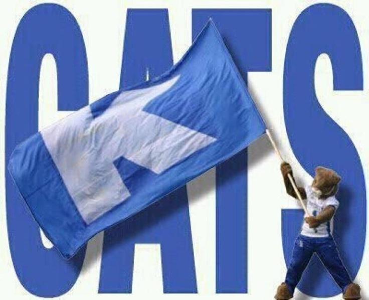 GO C-A-T-S!: Big Blue, Bleeding Blue, Wildcats Fans, Wildcats Basketb, Blue National, Cat Cat, Uk Basketball, Uk Wildcats, Kentucky Wildcats
