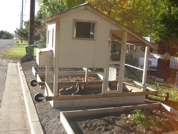 17 best images about chicken coops on pinterest the for Small portable chicken coop