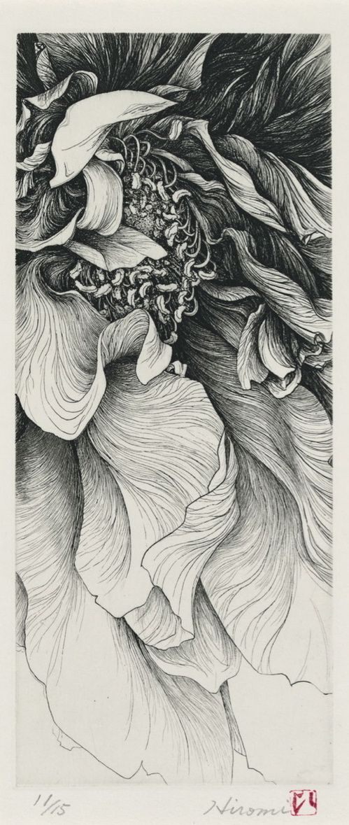 TITLE           A Flower  ARTIST        Hiromi Miura  YEAR           2005  PROCESS   Etching  SIZE             26X11cm