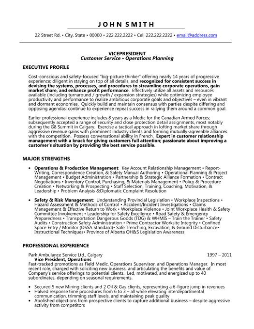 A professional resume template for a Vice President. Want it? Download it now.