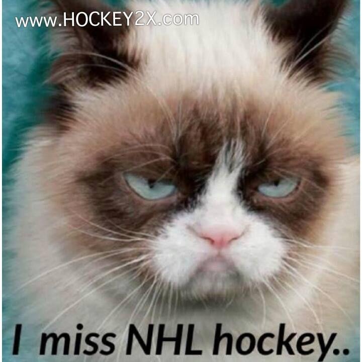 www.hockey2x.com