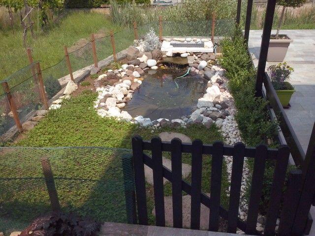 Mio laghetto per tartarughe e pesci