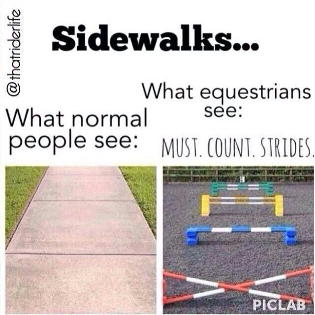 I thought this was just me!! So glade I saw this!! I'm just a bit more normal now I do this all the time... Jump the lines In the sidewalk!!! Only equestrians!