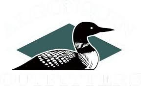 Image result for pinterest aboriginal loon art