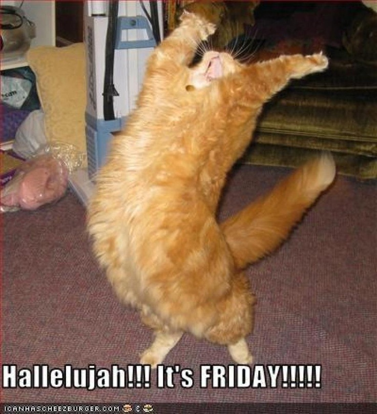 woo hoo Friday :D | •♦♥ ғυnny 2 ♥♦• | Pinterest