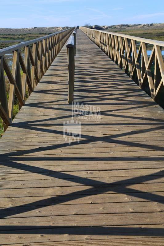 A ponte certa pode fazer a diferença no desenvolvimento de uma história / The right bridge makes all the difference in the development of a story