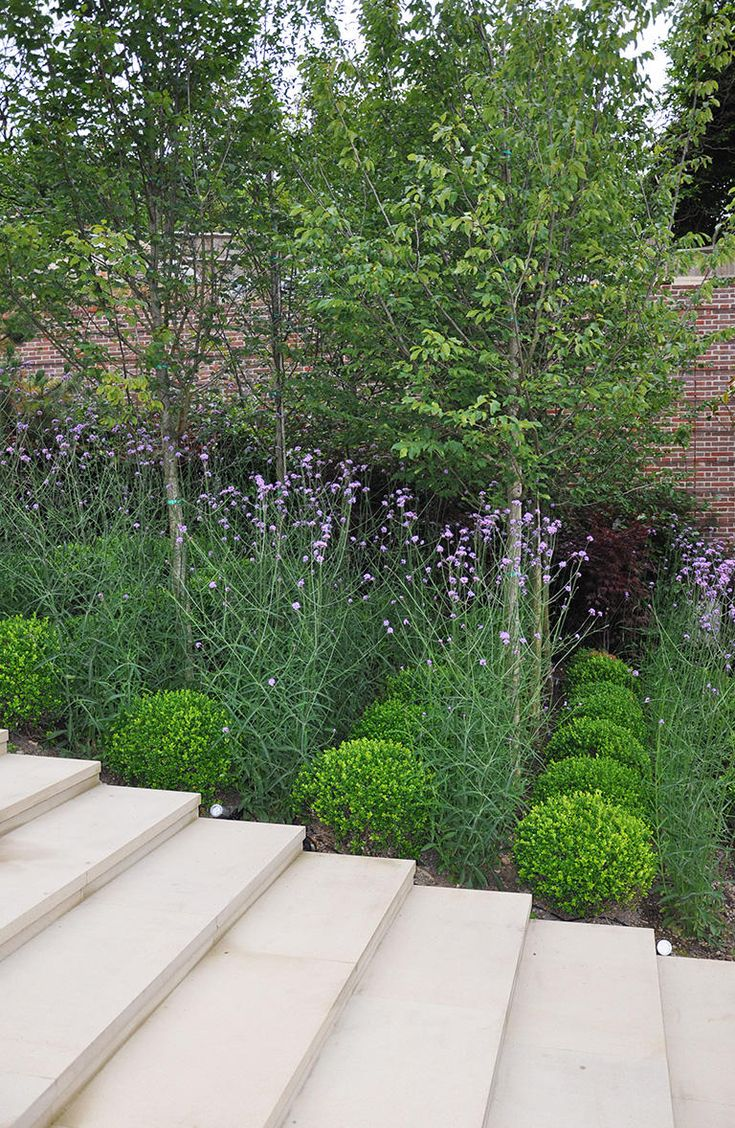 Buy blue dune lyme grass in nw arkansas - 17 Best Images About Green Outdoor On Pinterest Gardens Garden Design And Landscaping
