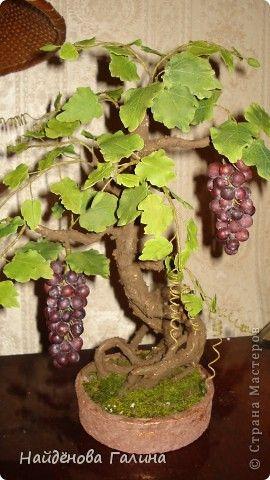 Свой виноград круглый год!Наслаждайтесь!Любители винограда!. Фото 1