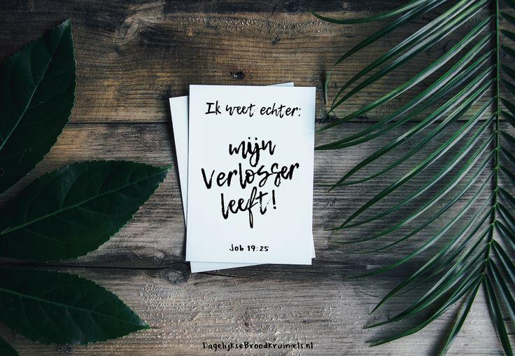 Ik weet echter: mijn Verlosser leeft! Job 19:25  #Verlosser, #Kennis  https://www.dagelijksebroodkruimels.nl/job-19-25/