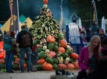 Сельское хозяйство растет за счет эмбарго на импорт продуктов питания http://www.agroxxi.ru/stati/selskoe-hozjaistvo-rastet-za-schet-yembargo-na-import-produktov-pitanija.html  Российская экономика падает, но агропром растет