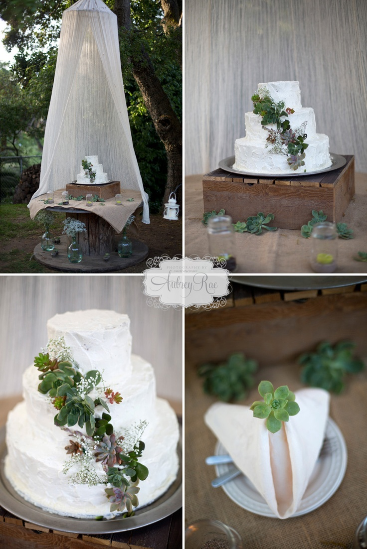 succulent cake rustic wedding decor flowers succulents