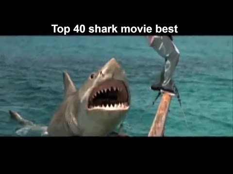 Lượng người xem: 299. Được đánh giá ở mức: 5.00/5 Star.  Nội dung phim Top 40 bộ phim về cá mập hay nhất  Top 40 Best Shark Films: Top 40 bộ phim về cá mập hay nhất  Top 40 Best Shark Films. Đây là kênh chuyên cung cấp video hay mọi ngày các bạn xem và ủng hộ kênh mình nhé..  Cập nhật ngày: 2017-05-30 04:19:44. 2 Like.  Có phải bạn thấy bộ phim Top 40 bộ phim về cá mập hay nhất  Top 40 Best Shark Films thuộc thể loại phim Viễn Tưởng này rất hay đang được chiếu tại XemTet.com có thời lượng…