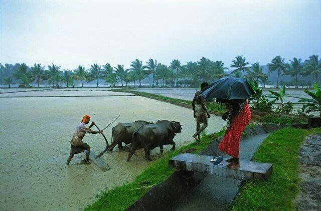 Farmer backbone of india