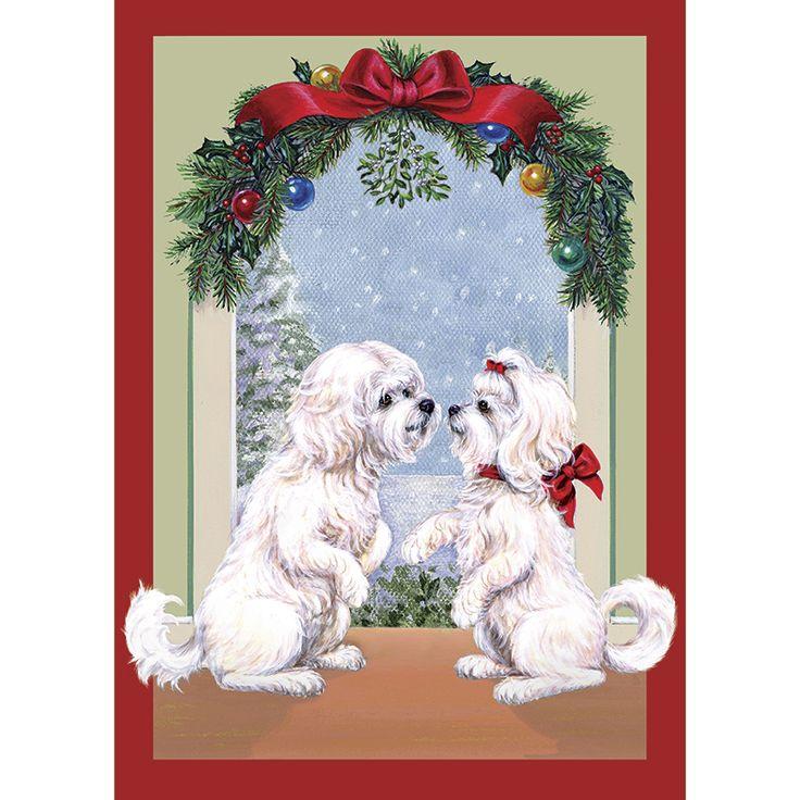 Absolutely Adorable! No Longer Available as of 2014 Maltese Mistletoe Maltese Christmas Cards - The Danbury Mint