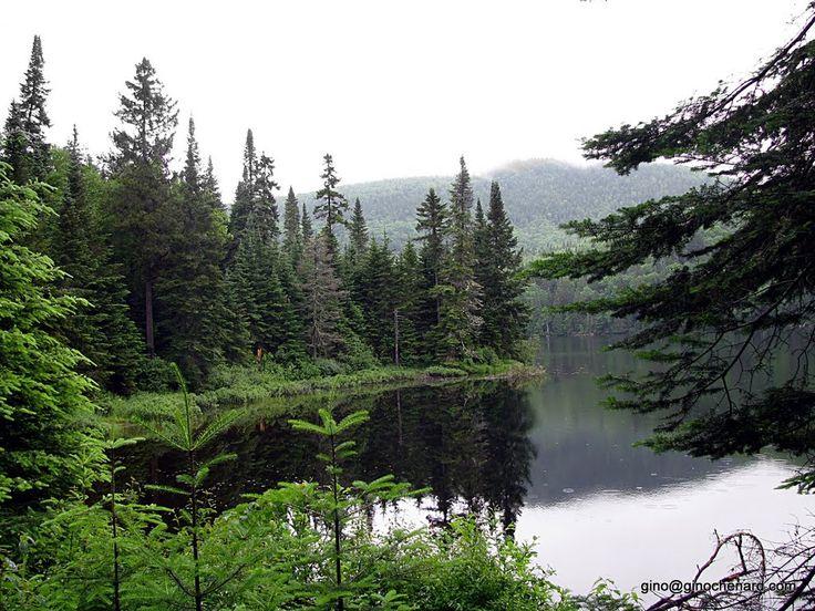 Bienvenue dans le parc national du Mont-Tremblant, le plus vaste parc du Québec, avec une superficie de 1 510 km². Vous voilà au pays du loup, de l'orignal, du cerf de Virginie et du grand harle.--   Via ferrata du diableLac MonroeCanotActivité de découverteBelvédère de la corniche   Welcome to Parc national du Mont-Tremblant, Québec's largest park with a surface area of 1,510 km² (580 sq. mi.). This is the land of the wolf, moose, white-tailed deer and the common merganser.