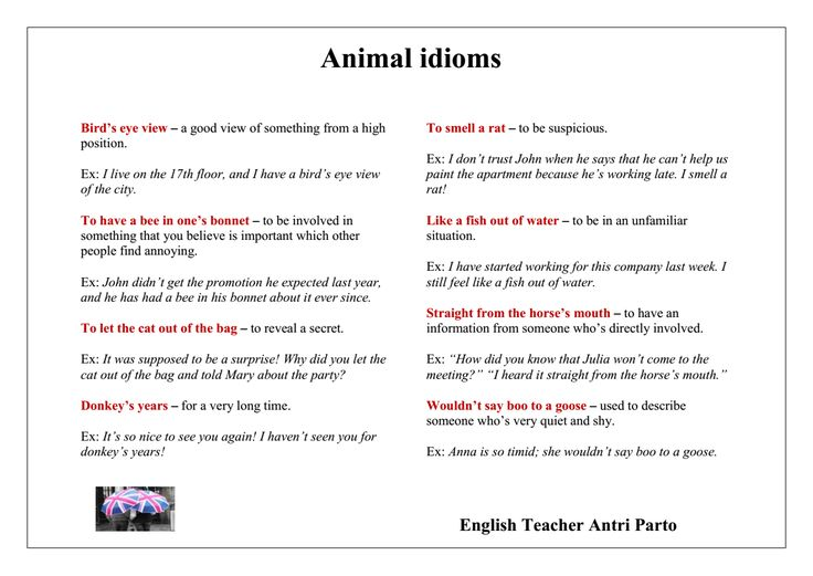 idioms for ending an essay Common idioms - these can be used latest ielts writing topics:view some of the recent ielts writing questions and essay topics that have appeared in the writing.