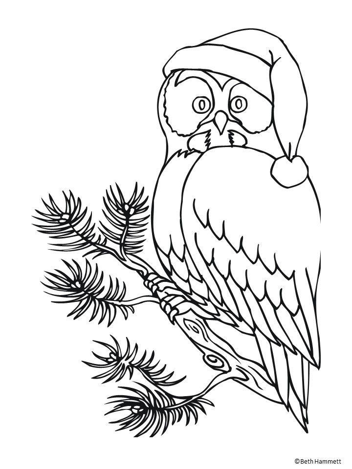 Tipss Und Vorlagen Winterurlaub Malvorlagen Ausmalbilder Eulen Malvorlagen Tiere Weihnachtsmalvorlagen
