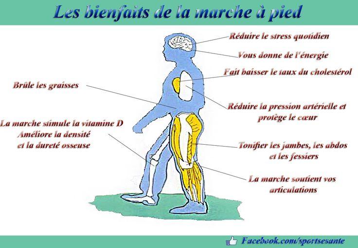 Les bienfaits de la marche à pied ~ Sports et Santé