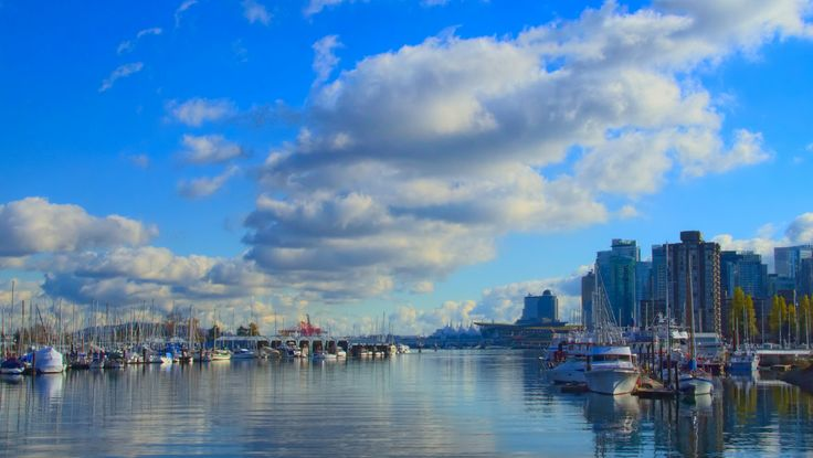 We were out for a long walk on the trails of Stanley Park. I wasn't really looking for a photo of the harbour, but I just couldn't resist this beautiful sky and the reflection on the water. Taken on a rare beautiful, Vancouver, November day near the entrance to the park on the Seawall looking South. If you look closely, in the distance, you can see the sails of Canada Place. #Vancouver