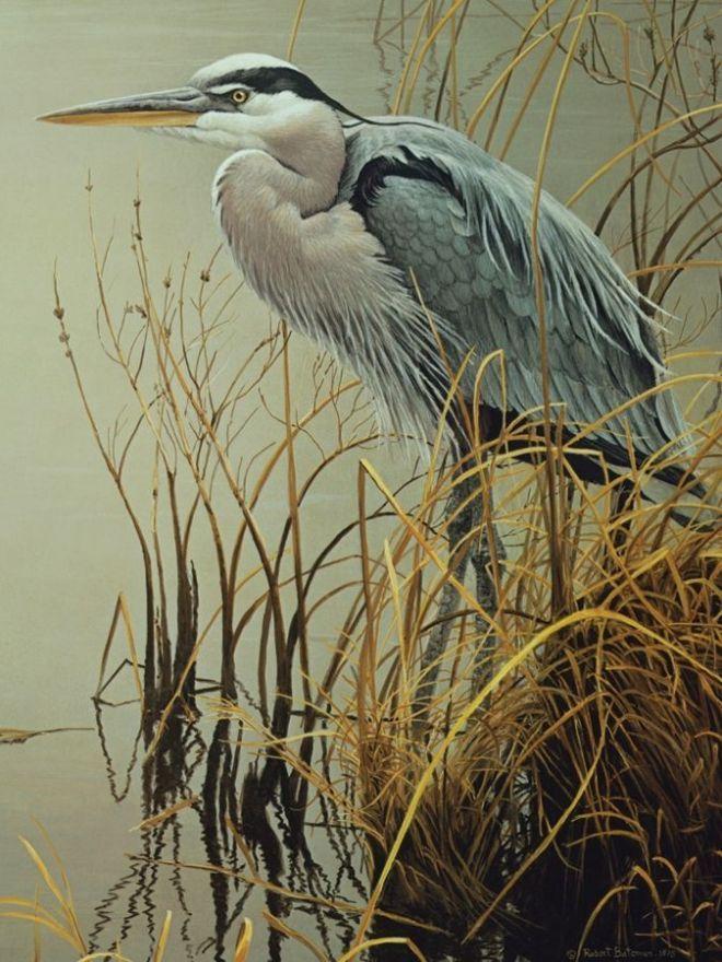 Пазл «Большая голубая цапля» Cobble Hill