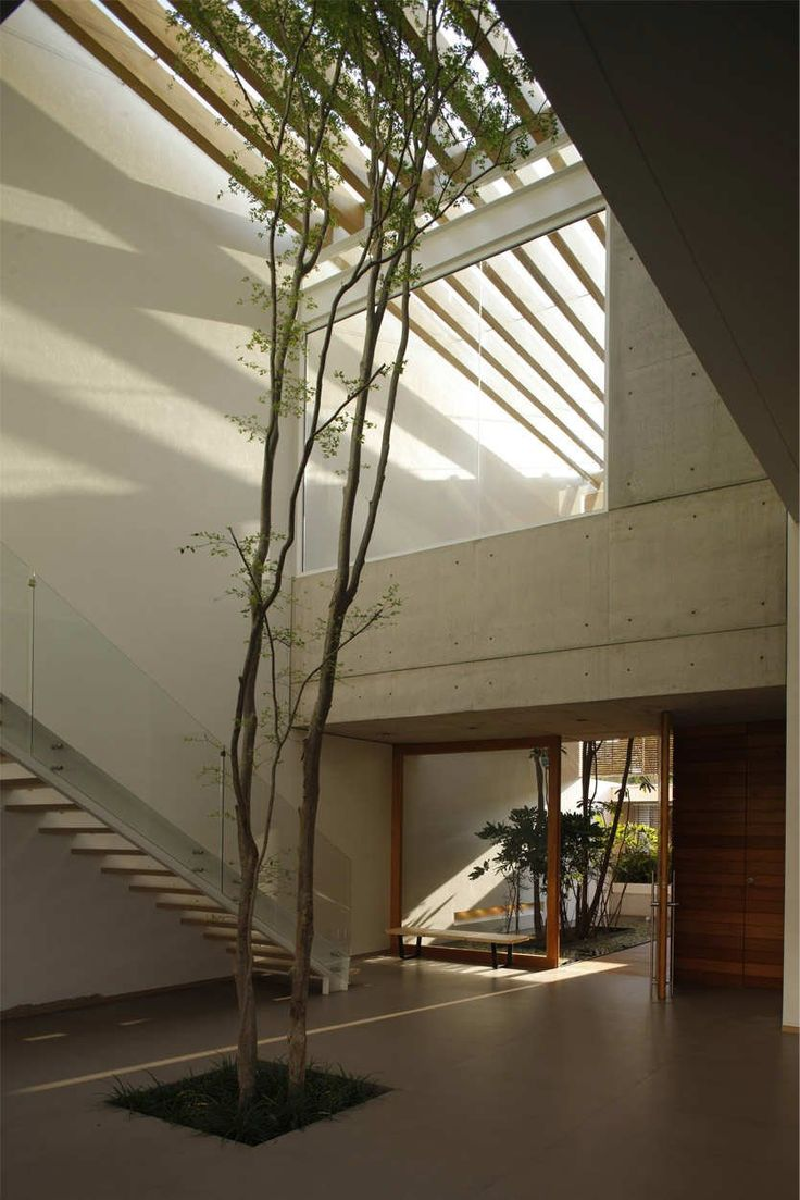 Chic Contemporary Spaces Rendered By Anh Nguyen: 25+ Best Indoor Courtyard Ideas On Pinterest