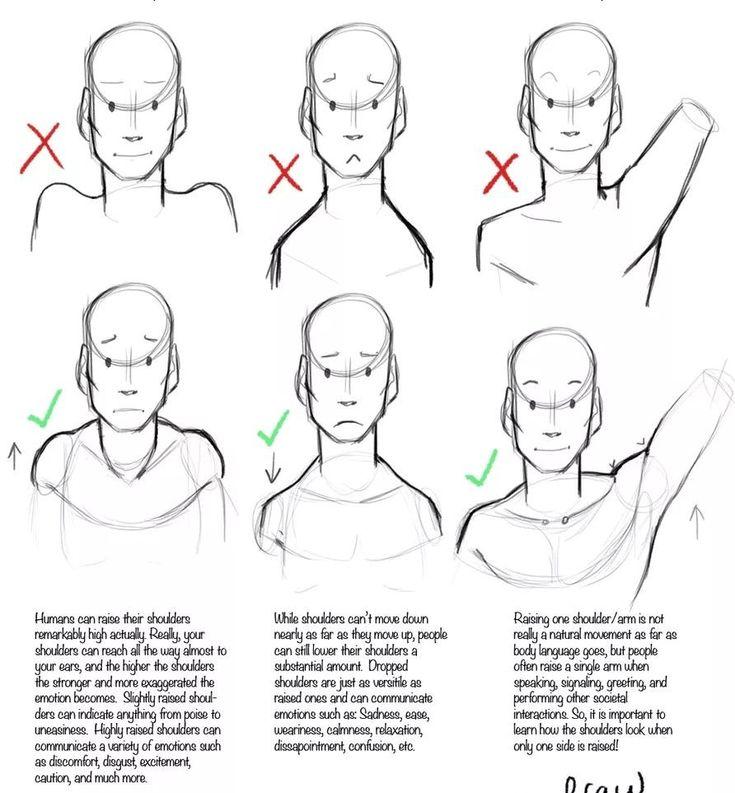 Head n shoulders