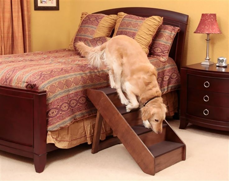 Wood Dog Stairs For High Bed With Built In Side Rails.Lightweight And  Portable