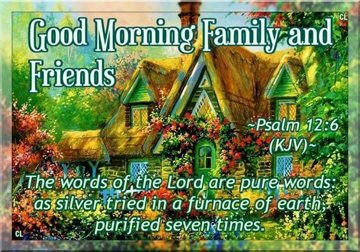 Psalm 12:6 KJV