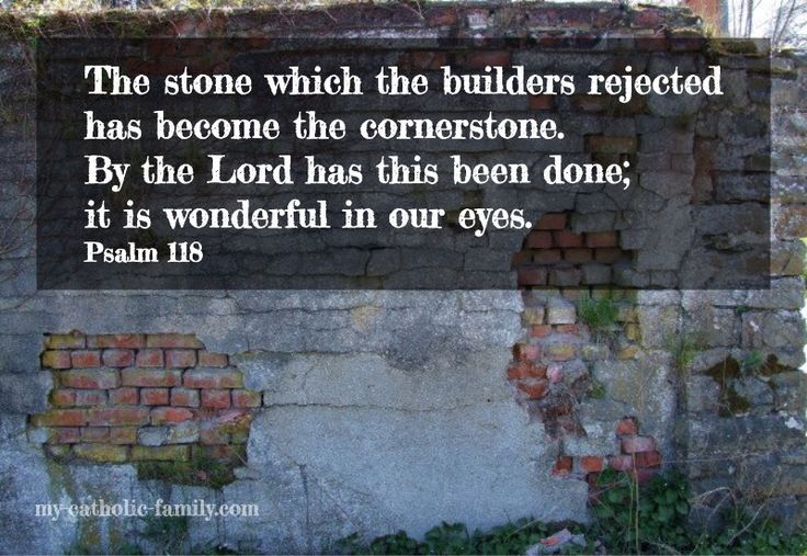 Daily Mass readings: http://www.my-catholic-family.com/3929/daily-scriptures-stone-builders-rejected-become-cornerstone/ The stone which the builders rejected has become the cornerstone. By the Lord has this been done; it is wonderful in our eyes. This is the day the Lord has made; let us be glad and rejoice in it.