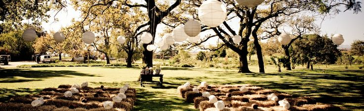 south-africa-outdoor-celebration