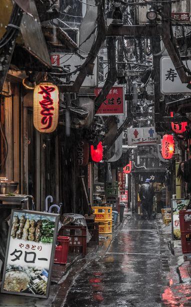 omoide yokocyo (Back alley of Shinjuku, Tokyo, Japan):雨の思い出横丁(新宿)