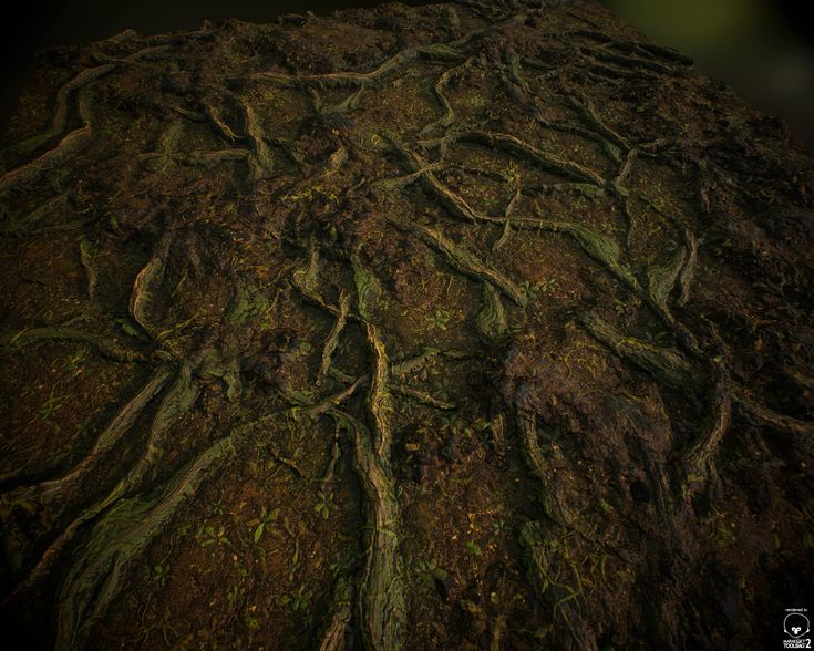 ArtStation - Roots - 100% Substance Designer , Robert Wilinski