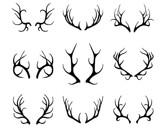 Vector deer antlers by Microvector on Creative Market