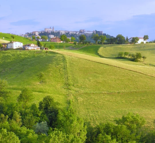 Summer afternoon, #camerino #italian landscape #le Marche
