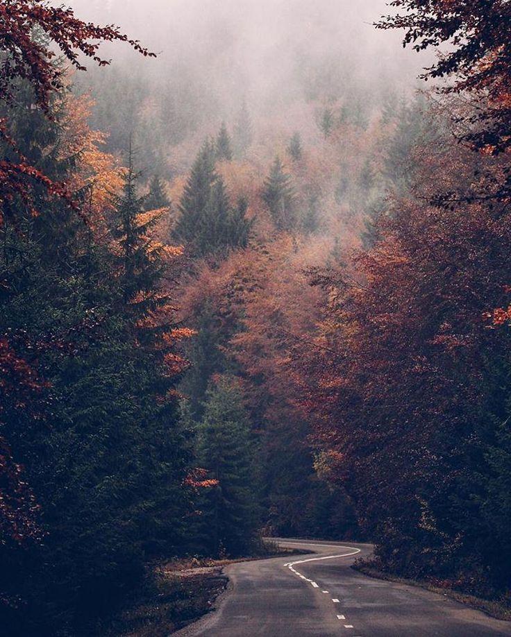 Romania #travel #Romania #naturephotography