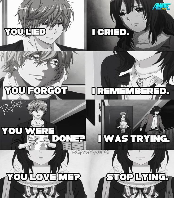 Anime: The Wolf Girl and the Black Prince
