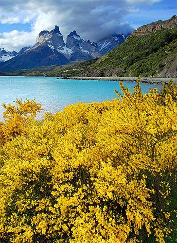 Lago Pehoe - Patagonia Chile