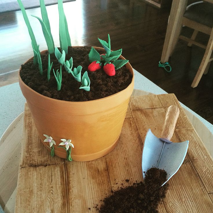 Flowerpot cake.