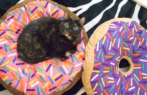 Donut Cat Bed Donut Cat Crazy Cats Pets