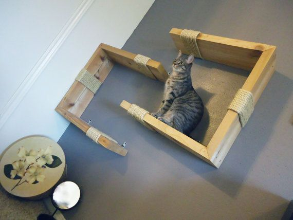 Wow- this would look great for us instead of hairy baskets everywhere. However, my cats are way too heavy to perch on the wall:)    Interactive Pet Wall Art Natural Pine by felinegood on Etsy, $185.00