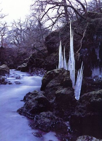 Andy Goldsworthy captures an icy winter.