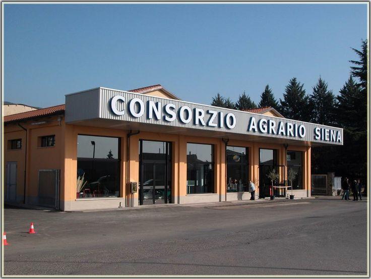 CONSORZIO AGRARIO DI SIENA - AGENZIA DI SANSEPOLCRO Via Campo Sportivo, 1/ A - 52037 - SANSEPOLCRO - Arezzo Tel:0575 258.715 - Fax:0575 258.780 - E-mail: age_sansepolcro@capsi.it SERVIZI: - Vendita e distribuzione prodotti per l'agricoltura - Prodotti garden - Centro stoccaggio cereali (Norme HACCP) - Impianto dotato di strumentazione per effettuare analisi proteine cereali - Centro ritiro girasole, mais e sorgo - Fitofarmacia
