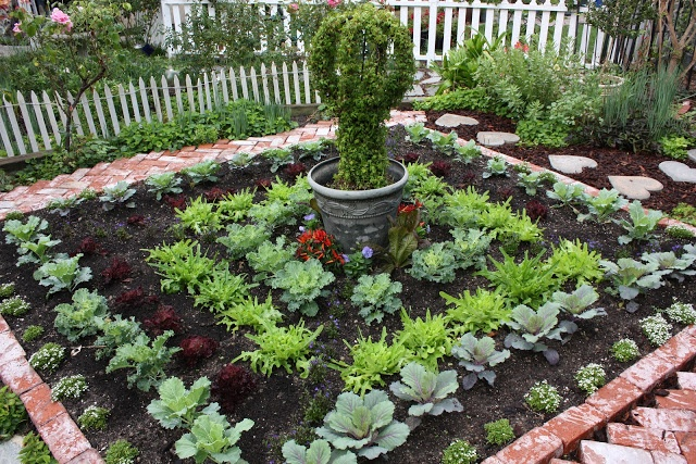 Walk In Garden Box: 482 Best Images About A Walk Down The Garden Path On