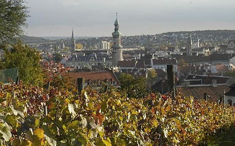 "Sopron: ""The capital of the Kékfrankos grape variety""."
