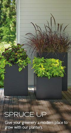Modern Outdoor Planters - Modern Outdoor Furniture - Room & Board