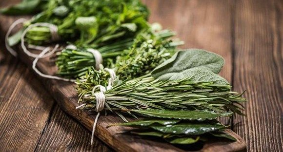 The simple mistake ruining your herbs